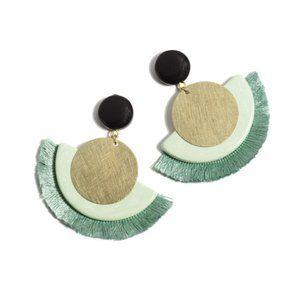 NWT! Gemini Mint Fringe & Resin Drop Earrings